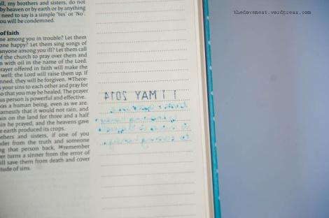 bible pen test